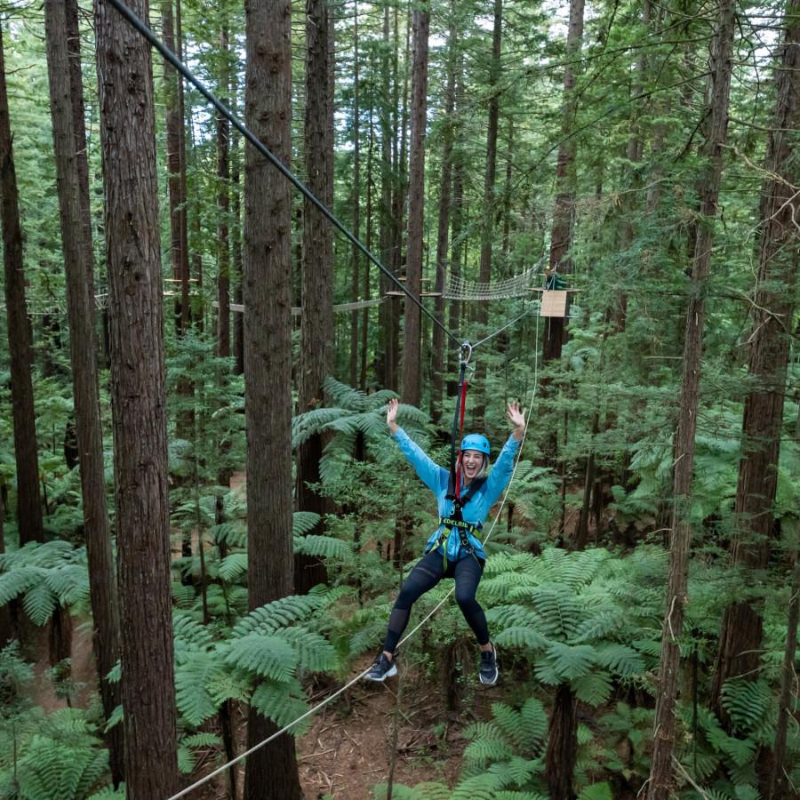 Redwoods Altitude