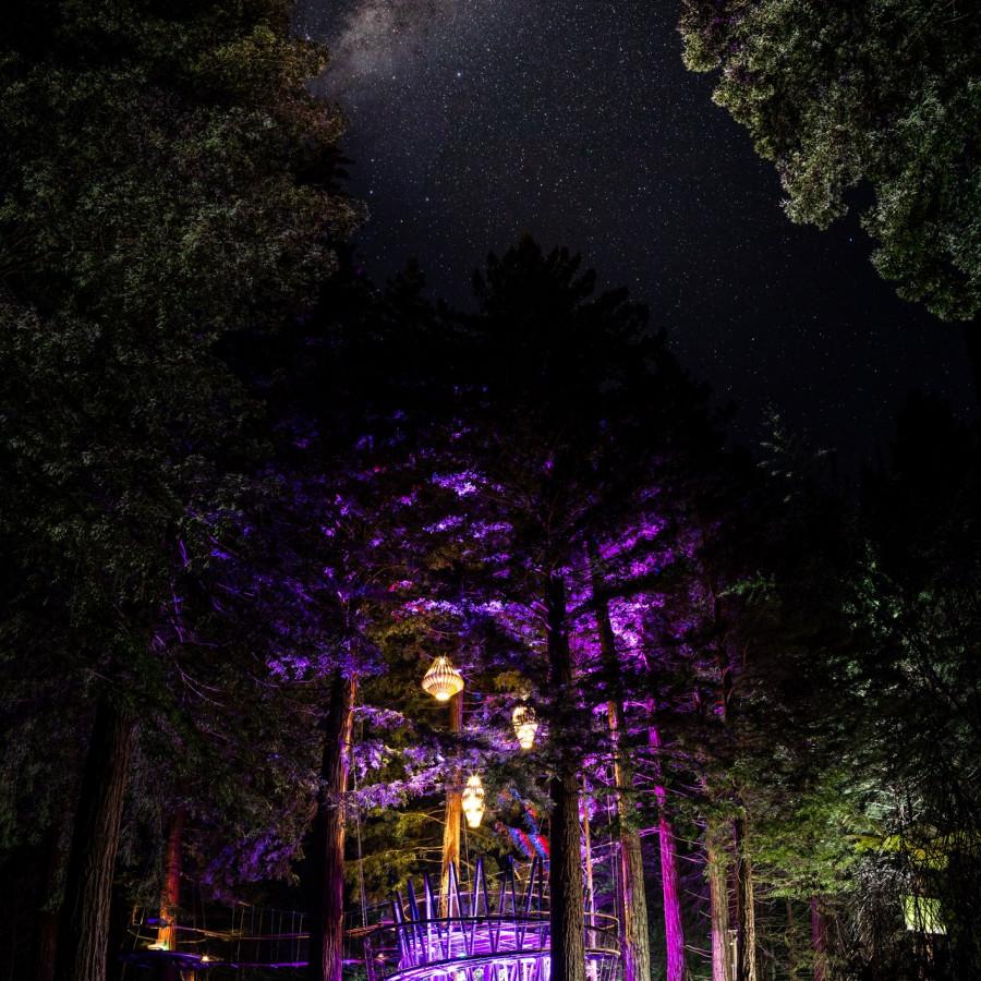 Redwoods Treewalk Conference